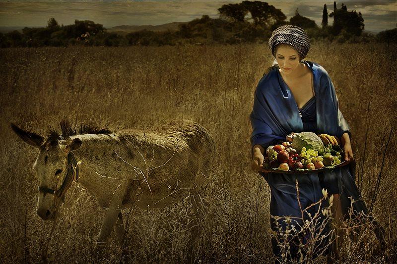 Abigail, una de las esposas del rey David